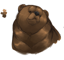 bear practise by Hennei