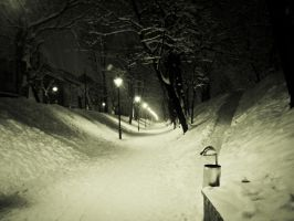 snowy path by Gundhardt