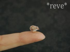Miniature Baby Chick Handmade Sculpture by ReveMiniatures
