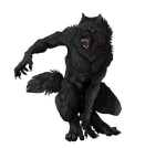 shaggy by sioSIN