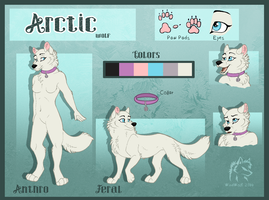Arctic Reference Sheet by WindWo1f