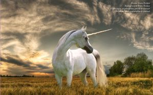 Unicorn after the Storm by LouKri