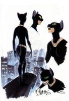 Catwoman design by BroHawk