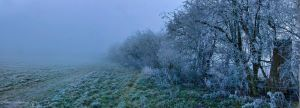 Frosty Panoramic by darkHunTer2009