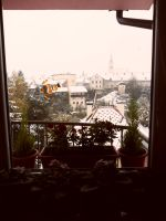 The view from the window by Winstress