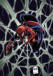 Spiderman Web by Rexbegonia