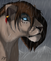 Watch the rain paw... by BeeStarART