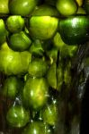 Limes in Glass by Bridgy