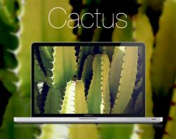 Cactus HD Wallpaper by infernoragazzo