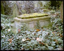 Abney Park Cemetery 3 by TheDot16