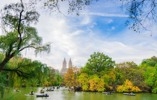 The Lake, Central Park, NYC by mnjul