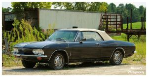 Chevrolet Corvair Monza Convertible by TheMan268
