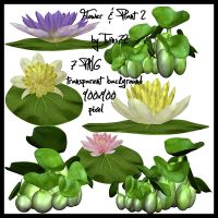 Stock Flower and Plant Pack 2 by Twins72
