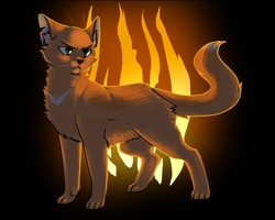 Fire by ninetail-fox