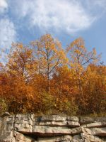 Autumn Cliff Stock Scenery 21 by FantasyStock