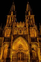 Cathedrale de Sees Orne France by hubert61