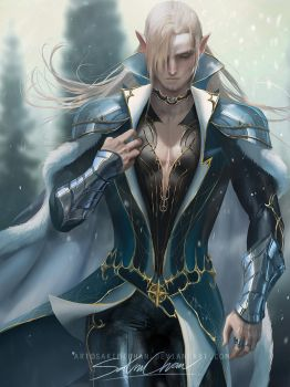 Elf prince by sakimichan