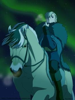 Northern Lights from Horseback by Hubedihubbe