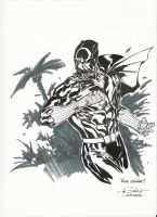 Black Panther - LCF 2009 by SpiderGuile