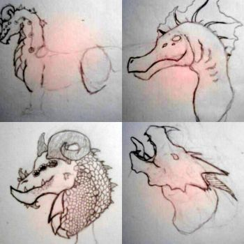 Dragon Bust Sketches by sammim123