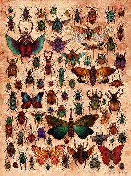 Love Bugs by AngelaRizza