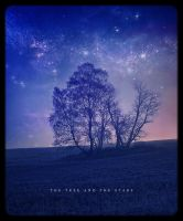The Tree and The Stars by xkillz