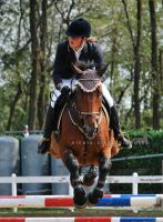 Showjumping II by firegold