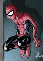Spidey at night by scarecrowhassan