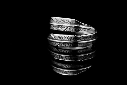 Bohemian Feather Ring by gothicanimefreak666