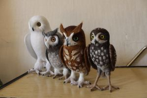 Felted Owl Army by Sillykoshka
