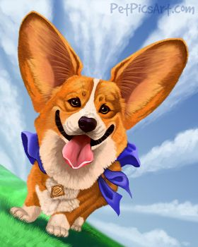 Famous Friday: Otis the Super Corgi! by CharReed