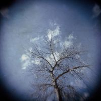 holga 4 by JasonKaiser