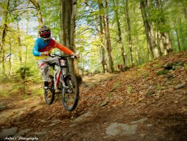 Downhill ride by toldeanQ
