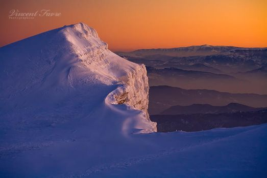 A gift of the sun... by vincentfavre