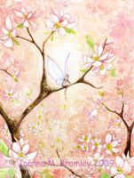 Pink Blossom View crd by JoannaBromley