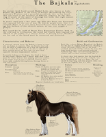 The Bajkala Breed Sheet by SageSinRiddle