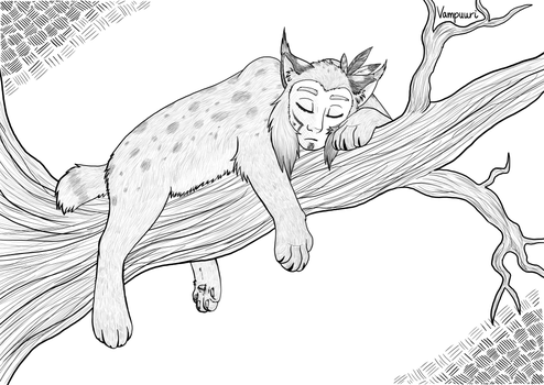 Sleeping lynx by Vampuuri
