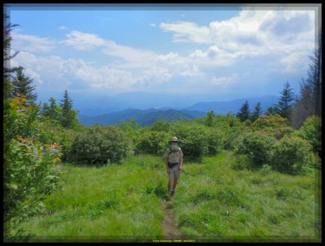 Ranger Ricardo at Andrews Bald by slowdog294