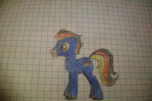 German Pony by GalleLunian