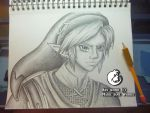 Link ~ Warrior of Courage by MarieJaneWorks