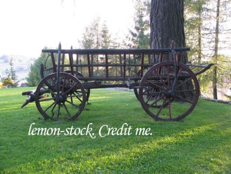 carriage by lemon-stock