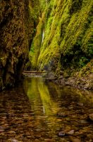 Oneonta Gorge by DrisanaPecado