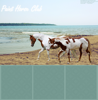 Paint Horse Club layout by run-wild