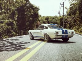 Shelby GT350R by Laffonte
