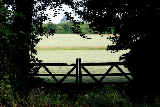 Through the gate by MarkTBSc