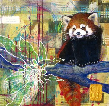 flora + fauna 6: Red Panda by brandonsch1