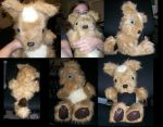 Second Self Teddydog by lizspit