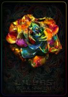 Rainbow Glamour Rose by Lilyas