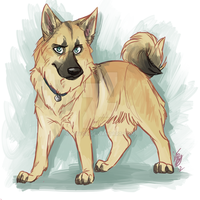 Spn dogs: Adam by Aibyou