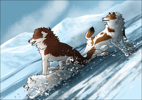 NorthPaws Exploration 1/3 by OMSisRPing